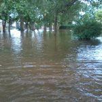 Inundado en Colombini 8