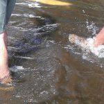 Inundado en erezcano 10