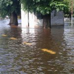 Inundado en erezcano 11