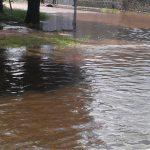 Inundado en erezcano 18