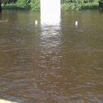 Inundado en erezcano 19