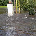 Inundado en erezcano 24