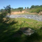 Contaminación arroyo Ramallo 3 - 20 de Marzo de 2014