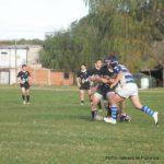 Rugby - del acuerdo - pinguino - 18 de mayo 2014 2