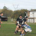 Rugby - del acuerdo - pinguino - 18 de mayo 2014 5